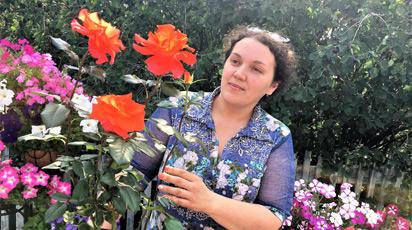 10 полезных советов по выращиванию роз в контейнерах