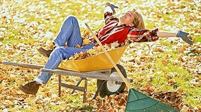 Осенняя обработка сада - советы экспертов
