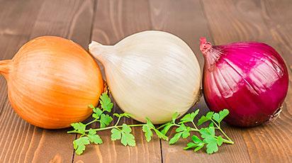Репчатый лук из семян: секреты выращивания