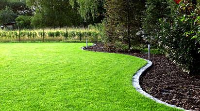 Сроки посева газона, подготовка почвы, особенности посадки