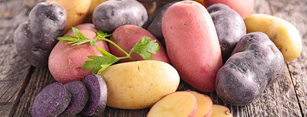 Картофель в мешках, бочках, пакетах, ящиках — урожай для ленивых