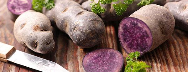 Особенности выращивания фиолетового картофеля