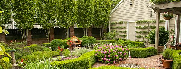 Планируем сад правильно – тонкости создания уютного природного уголка