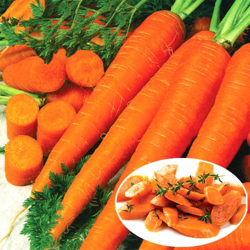 Морковь Детский вкус, семена изображение 1 артикул 34.3011С