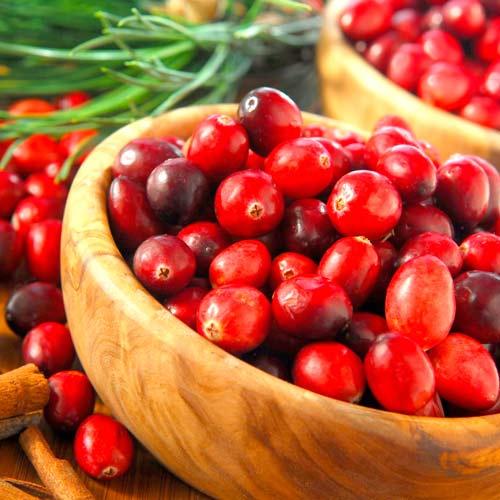 Клюква крупноплодная Рубиновая россыпь изображение 1 артикул 65250
