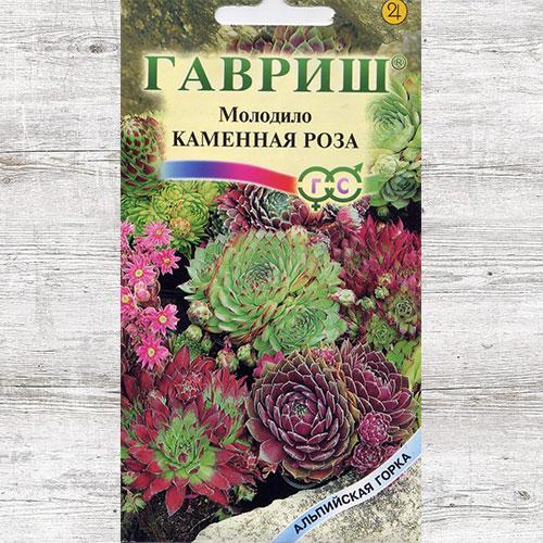 Молодило Каменная Роза, смесь окрасок изображение 1 артикул 71102