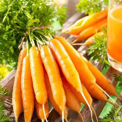 Морковь Восточная красавица изображение 1 артикул 71777