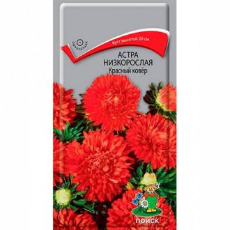 Астра Красный ковер изображение 7