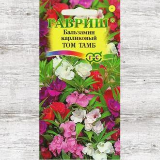 Бальзамин карликовый Том Тамб, смесь окрасок изображение 8