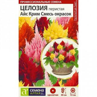 Целозия перистая Айс Крим, смесь окрасок изображение 8