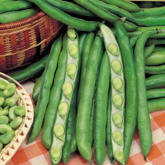 Фасоль овощная Романа изображение 5