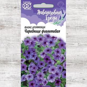 Флокс Друммонда Чаровница фиолетовая