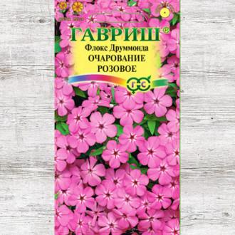 Флокс Друммонда Очарование розовое изображение 3