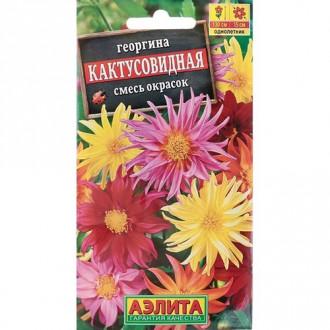 Георгина Кактусовидная, смесь окрасок изображение 2