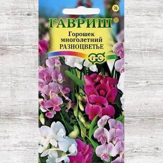 Горошек многолетний Разноцветье, смесь окрасок изображение 5