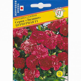 Гвоздика садовая Лилипот пурпурная F1 изображение 5