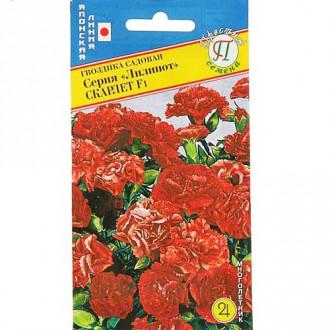 Гвоздика садовая Лилипот Скарлет F1 изображение 3