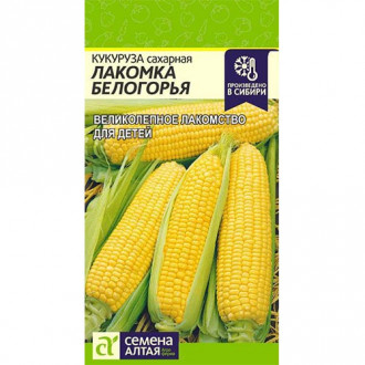 Кукуруза сахарная Лакомка Белогорья изображение 1