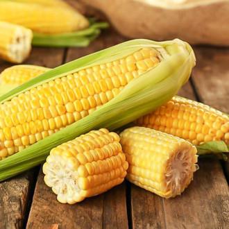 Кукуруза сахарная Медовая изображение 1