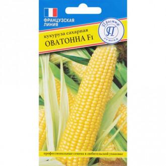 Кукуруза сахарная Оватонна F1 изображение 3