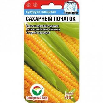 Кукуруза Сахарный початок изображение 7