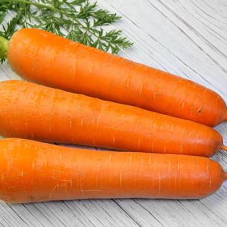 Морковь Ноу флай F1 изображение 4
