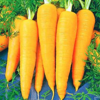 Морковь Янтарный плов изображение 7