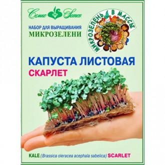 Набор Капуста листовая Скарлет изображение 7