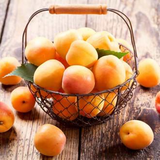 Персик-абрикос Медовый месяц изображение 3