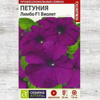 Петуния Лимбо Виолет F1 изображение 8