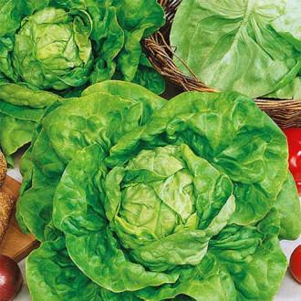 Салат кочанный Русский деликатес изображение 1