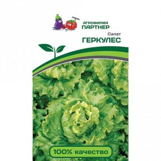 Салат листовой Геркулес