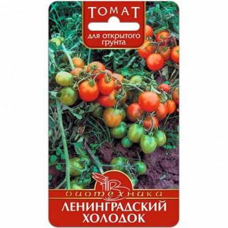 Томат Ленинградский холодок изображение 2