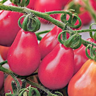 Томат Сибирская груша розовая изображение 2
