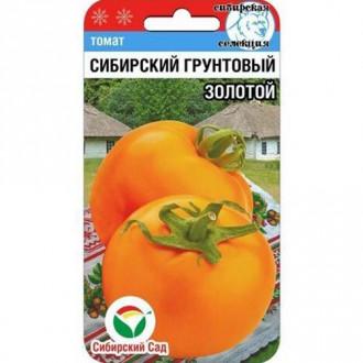 Томат Сибирский грунтовый золотой изображение 8