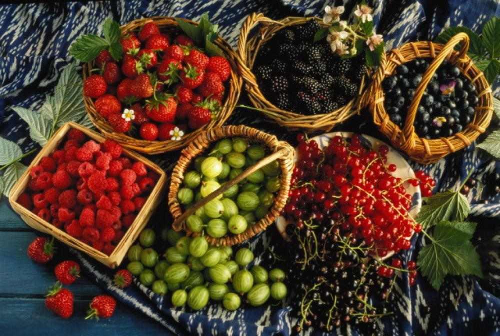 Свежие фрукты ягоды купить